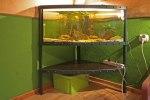 półka pod akwarium
